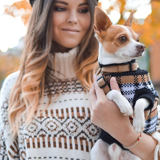 woman in sweater holding small dog in sweater
